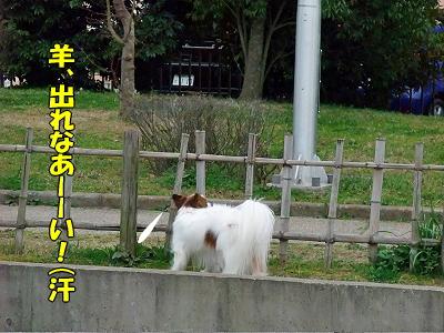 すぷりんぐ★プチオフ part3�