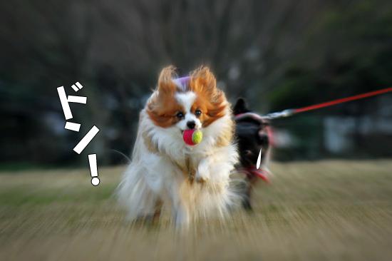 鬼ごっこ★ 04
