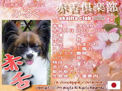 131-milk-2008sakura