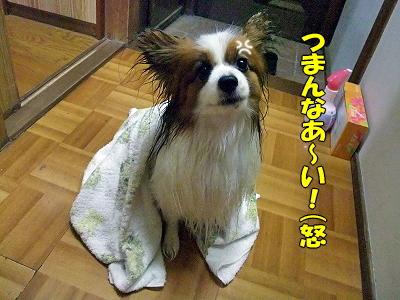 また雨なり。。�