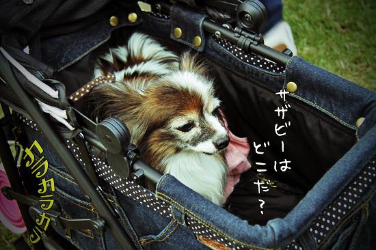【サザオフ2011】 part6 02