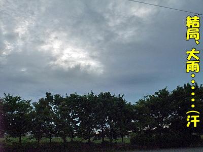 雨宿り・・�