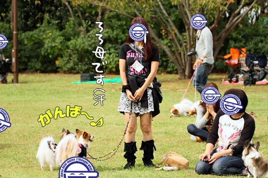 【サザオフ・2014】★その3 自己紹介タ〜イム♪ 22