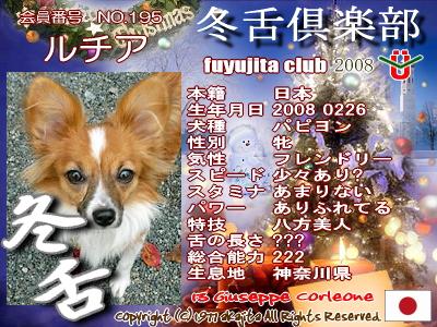 195-lucia-2008fuyu