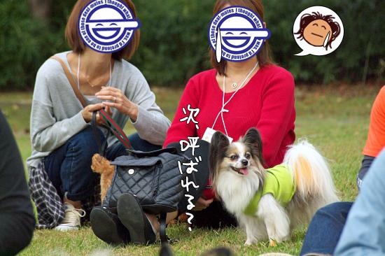 【サザオフ・2014】★その2 巨人VS阪神 16
