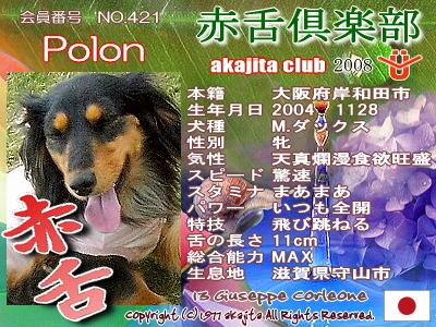 421-polon-2008june
