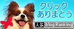 ブログランキング★2009.09.01