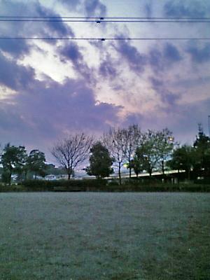 夕方から雨。。