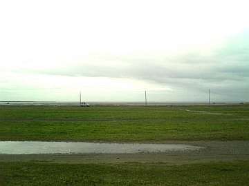 雨上がりの翌日