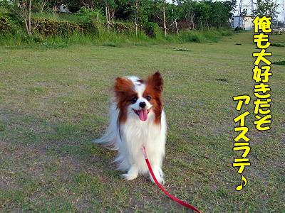 カプチ〜ノ★�