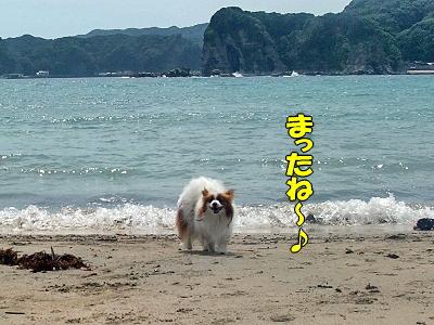 守谷海岸★�