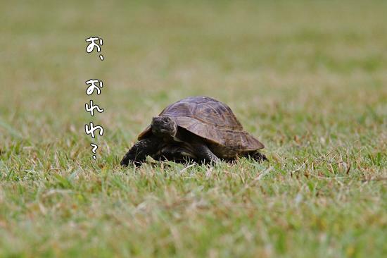 【サザオフ2011】 part3 08