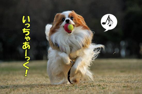 鬼ごっこ★ 06