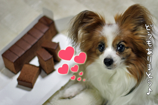 チョコとハートとバレンタイン♪ 13
