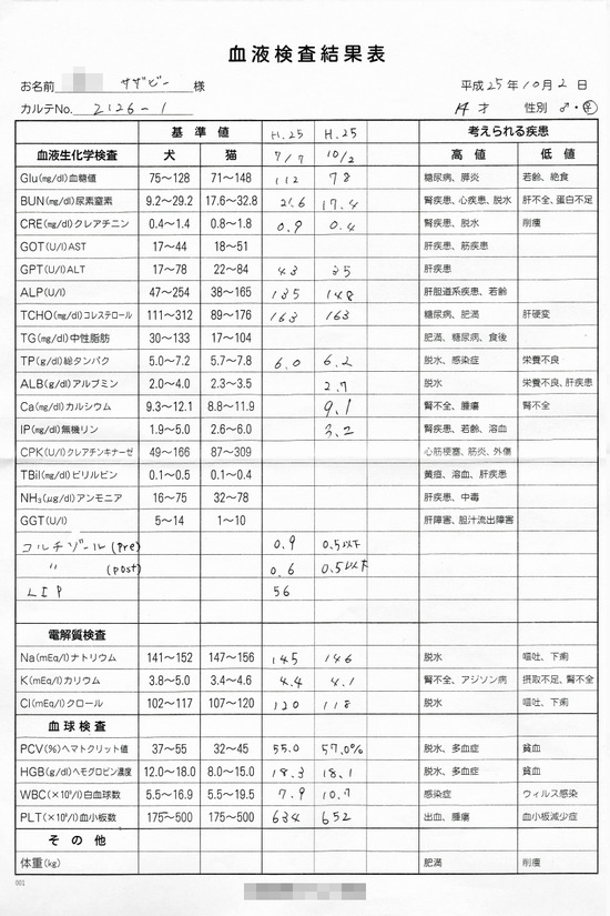 緊急検査・・・ 09