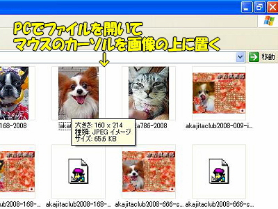 PC上での画像の大きさの確認方法