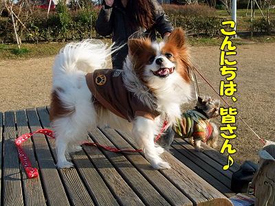 瑞穂★ぷち新年会�