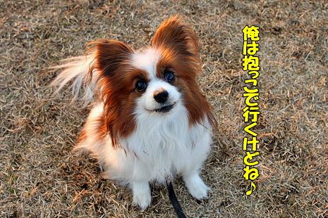 千葉インターでお会いしましょう♪�