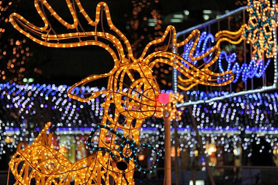 もうすぐクリスマス 03