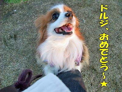 復活〜★�