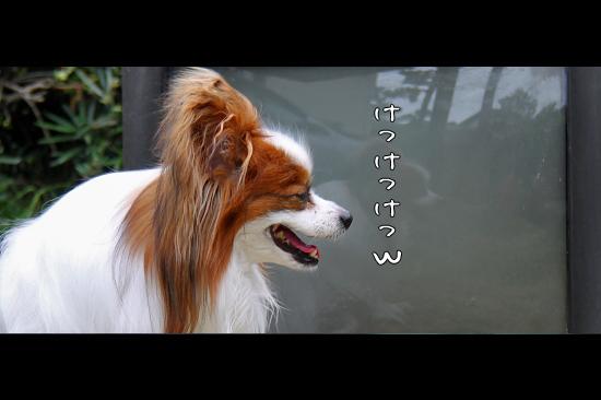さよなら、|||-_||| 貞子 08