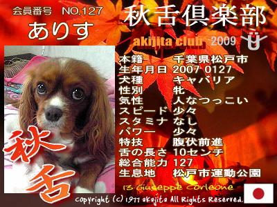 aki2009-127-alice