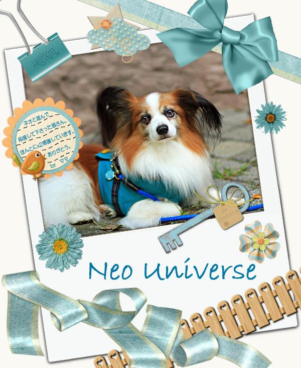 Neo Universe 16