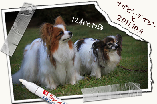 【サザオフ2011】 part6 23