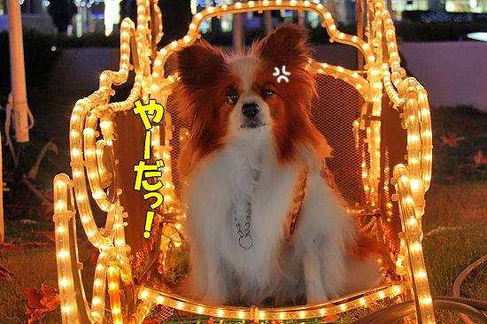 光の馬車★☆★(後篇) 14