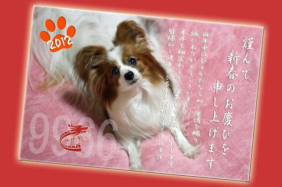 こんにちわ、2012年★☆★ 01