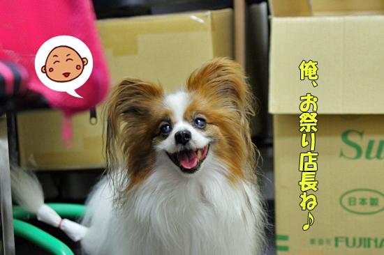 サザちゃん★お祭りレポ(前篇)02