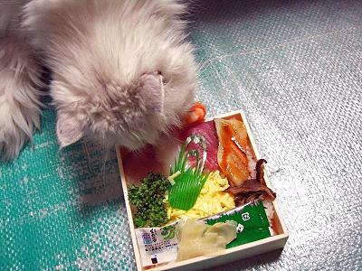 食品偽装の疑いが・・・�