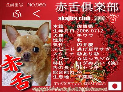 960-fuku-2009aka