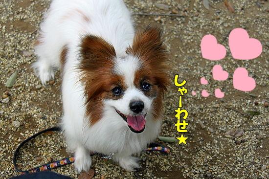 守谷へGO★ 12