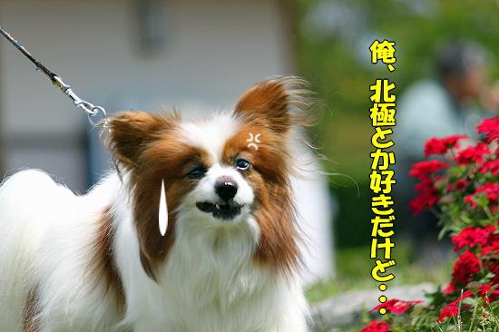 吉田公園♪(中編)�