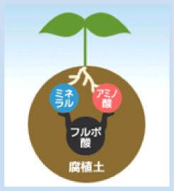 img_soil
