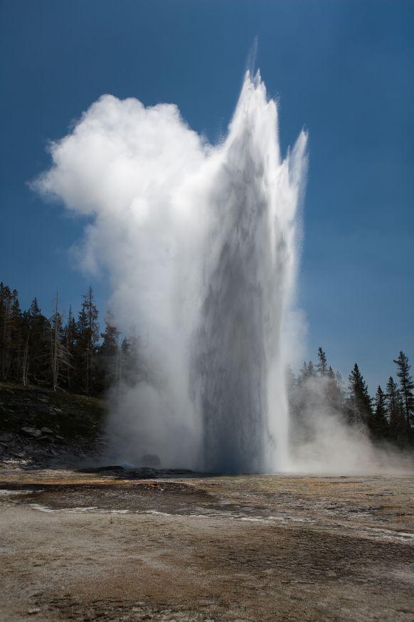 イエローストーン国立公園の画像 p1_21