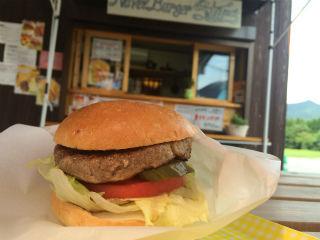Navel Burger Stars 1.jpg