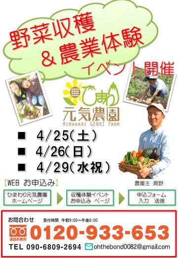 2015年春イベント チラシ 20150319 A3ポスター用
