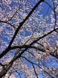 2014-03-31-09-41-38