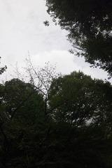 20110901