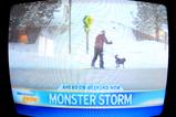 MonsterStorm!