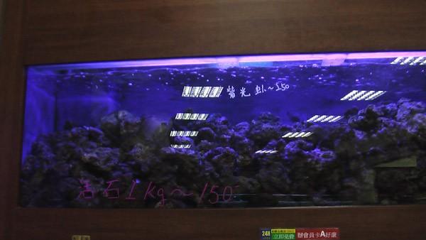 ショップ 海水 魚 日海センターの<公式>ホームページへようこそ