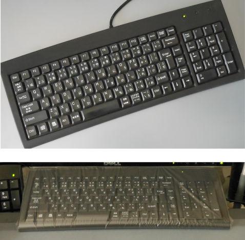 DSCN7150b