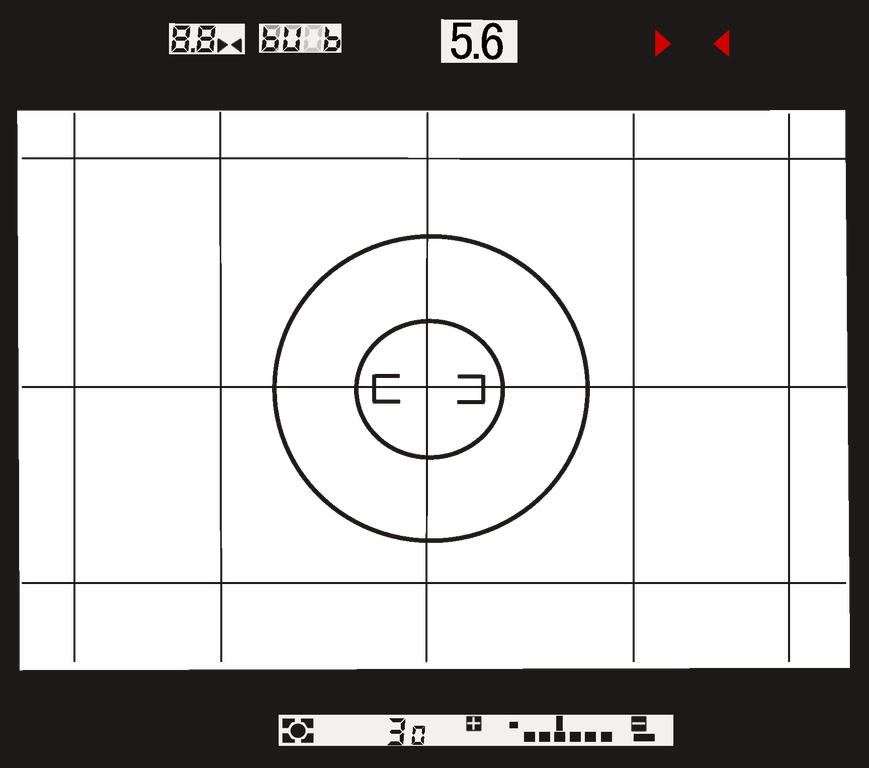 Nikon F4 Finder (example4)