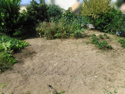 草刈り 5