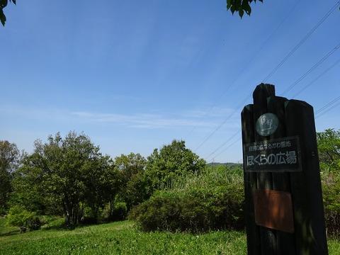 ameba ぬかた園地 4