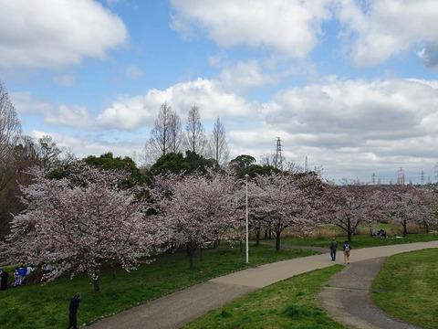 山田池公園 2