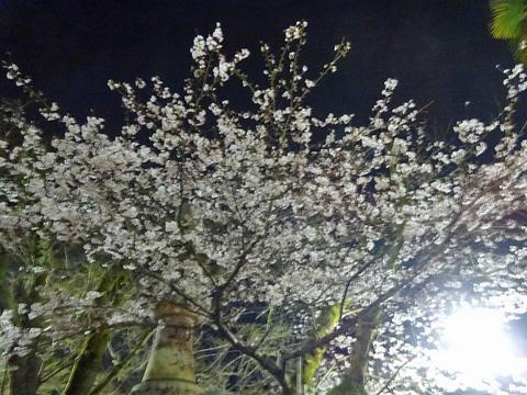 信貴山 5