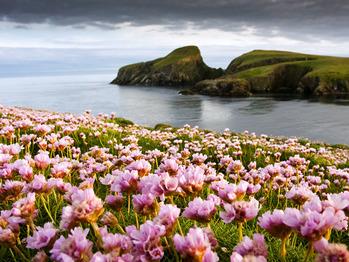 fair-isle-scotland_58605_600x450
